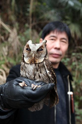 江西省庐山自然保护区救治放飞国家二级保护动物领