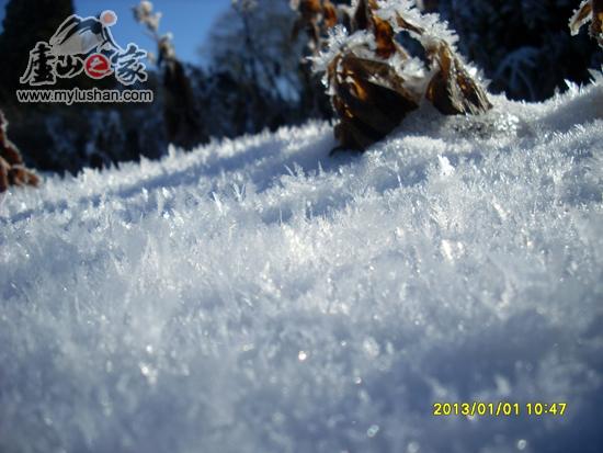 冬季庐山雪景之下雪花特写